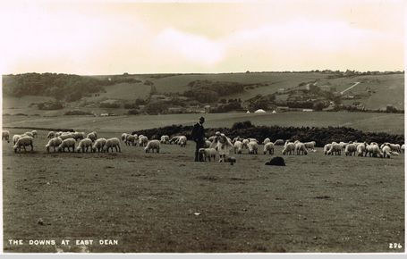 Downs at East Dean 1948