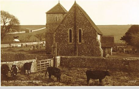 East Dean Church with cattle